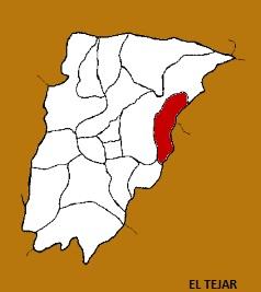MUNICIPIO DE EL TEJAR