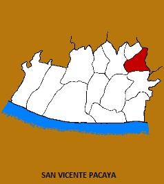 MUNICIPIO DE SAN VICENTE PACAYA