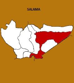 MUNICIPIO DE SALAMA