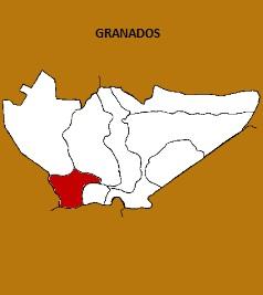 MUNICIPIO DE GRANADOS
